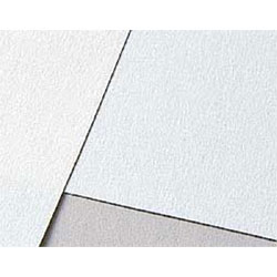 キャンソン木炭紙 100g/m2 木炭紙判 500×650mm (10枚入)