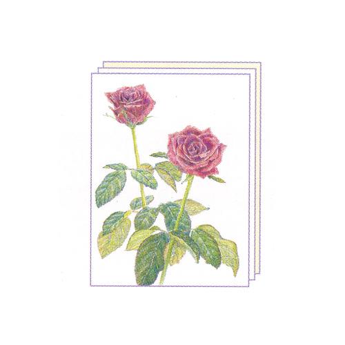 塗り絵 塗り絵物語 花ばな編 バラ ゆめ画材